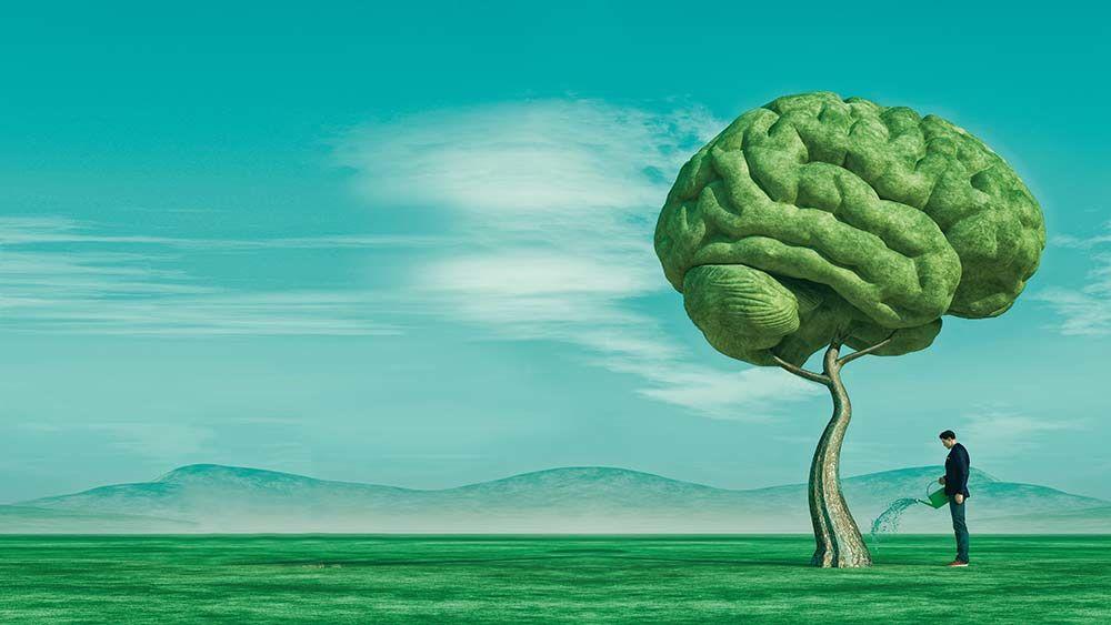 Как развить свой мозг до максимума