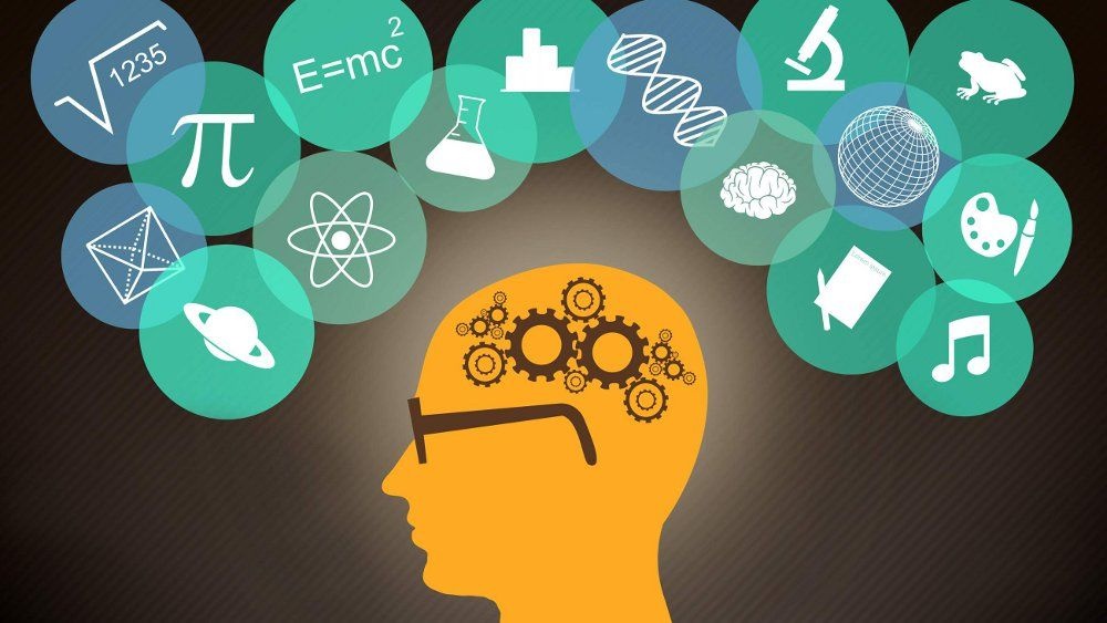 Как работает память человека?